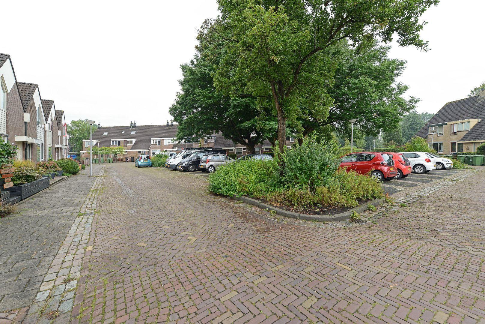 Ronde Bonk 5, Nieuwkoop foto-1 blur