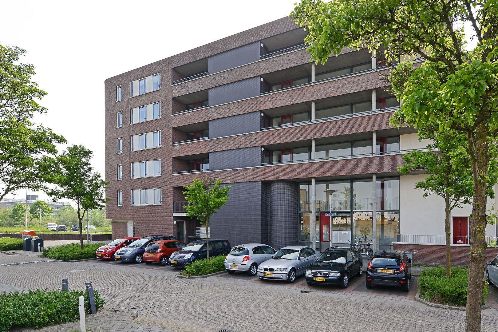 Polderpeil 538, Alphen Aan Den Rijn foto-2 blur