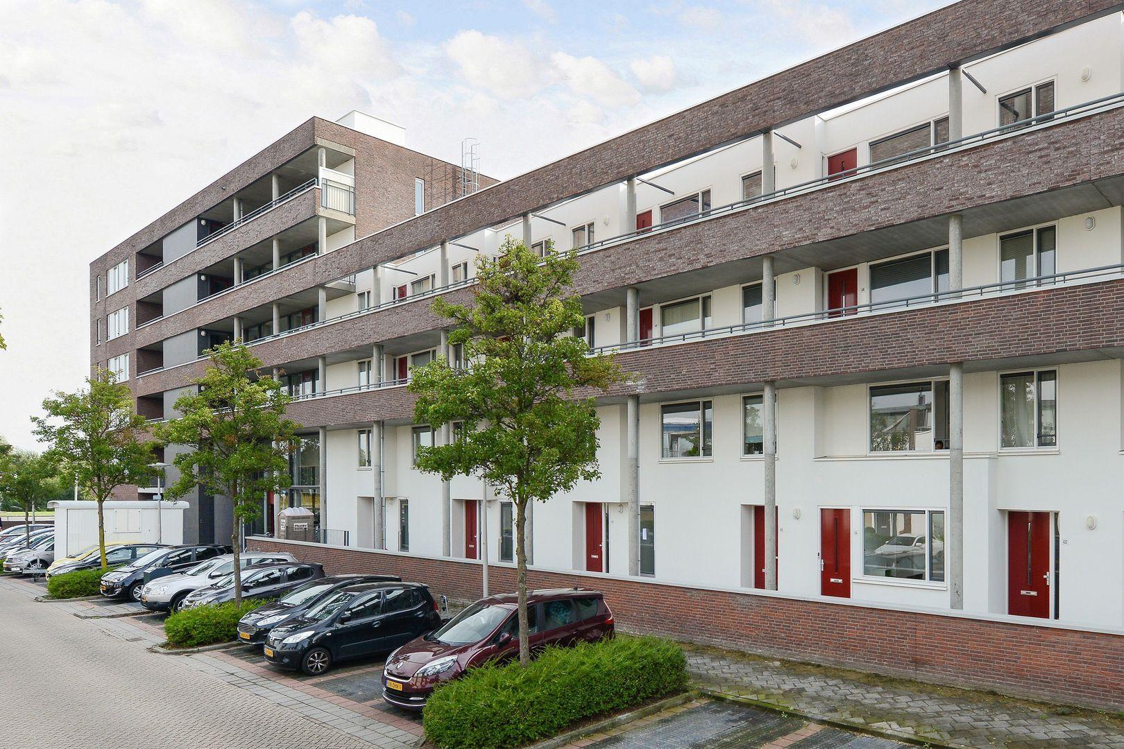 Polderpeil 538, Alphen Aan Den Rijn foto-1 blur