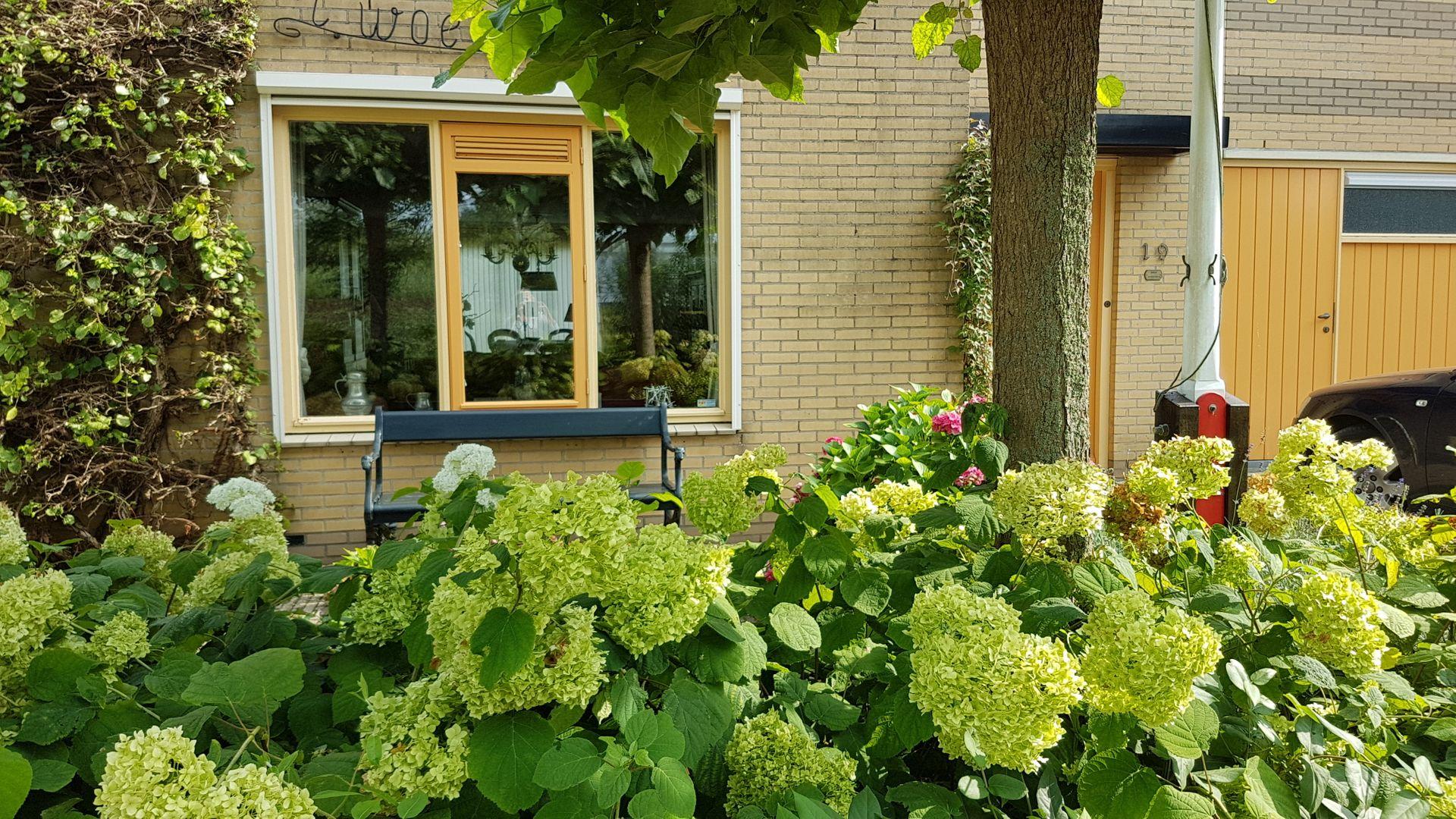Frankrijkpark 19, Alphen Aan Den Rijn foto-14 blur