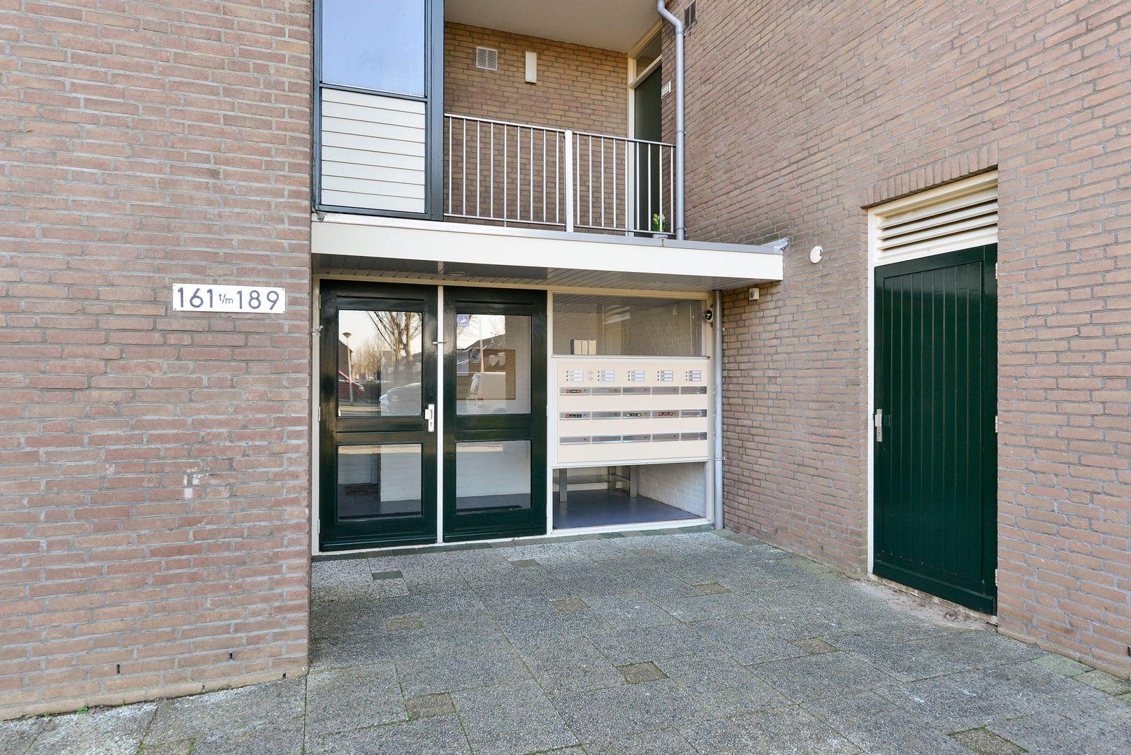 Koraalzwam 183, Alphen Aan Den Rijn foto-19 blur