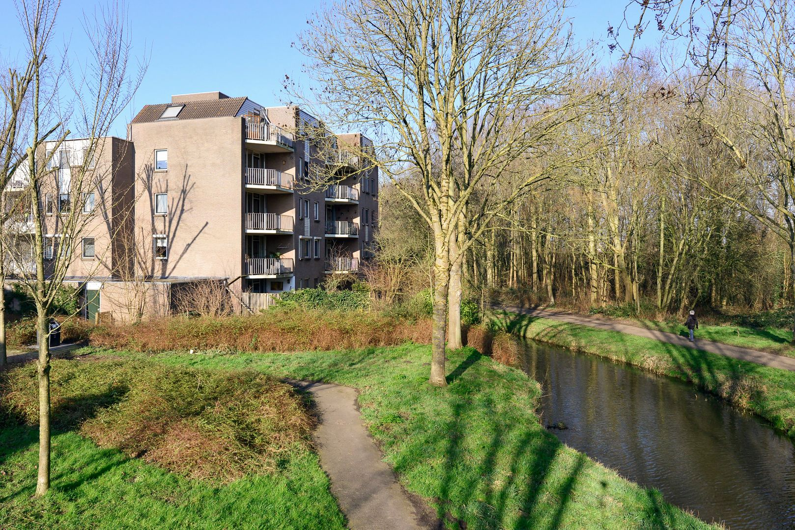 Koraalzwam 183, Alphen Aan Den Rijn foto-18 blur