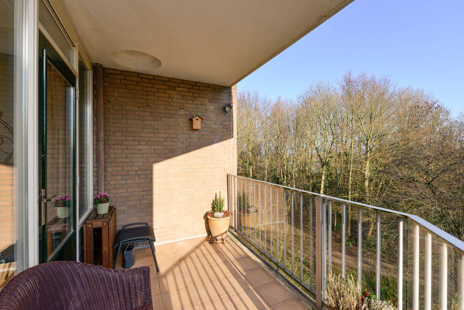 Koraalzwam 183, Alphen Aan Den Rijn foto-16 blur
