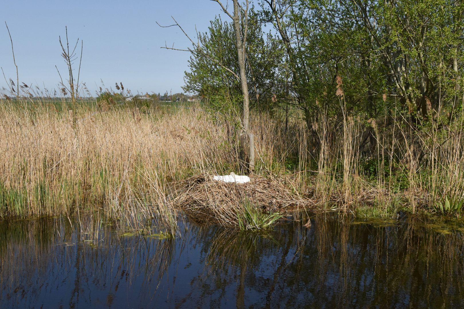 Ridderbuurt 22, Alphen Aan Den Rijn foto-43 blur