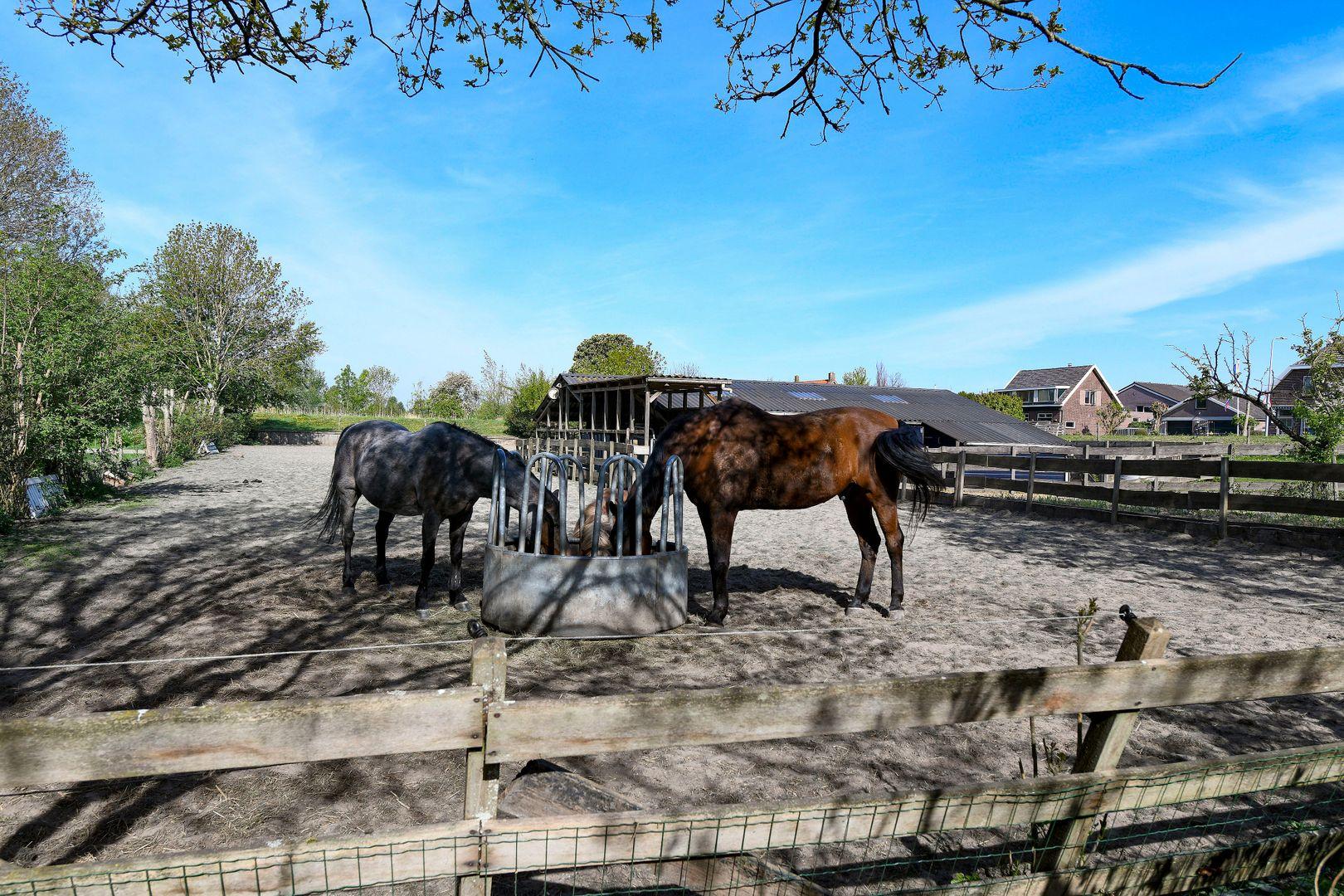 Ridderbuurt 6 a, Alphen Aan Den Rijn foto-31 blur