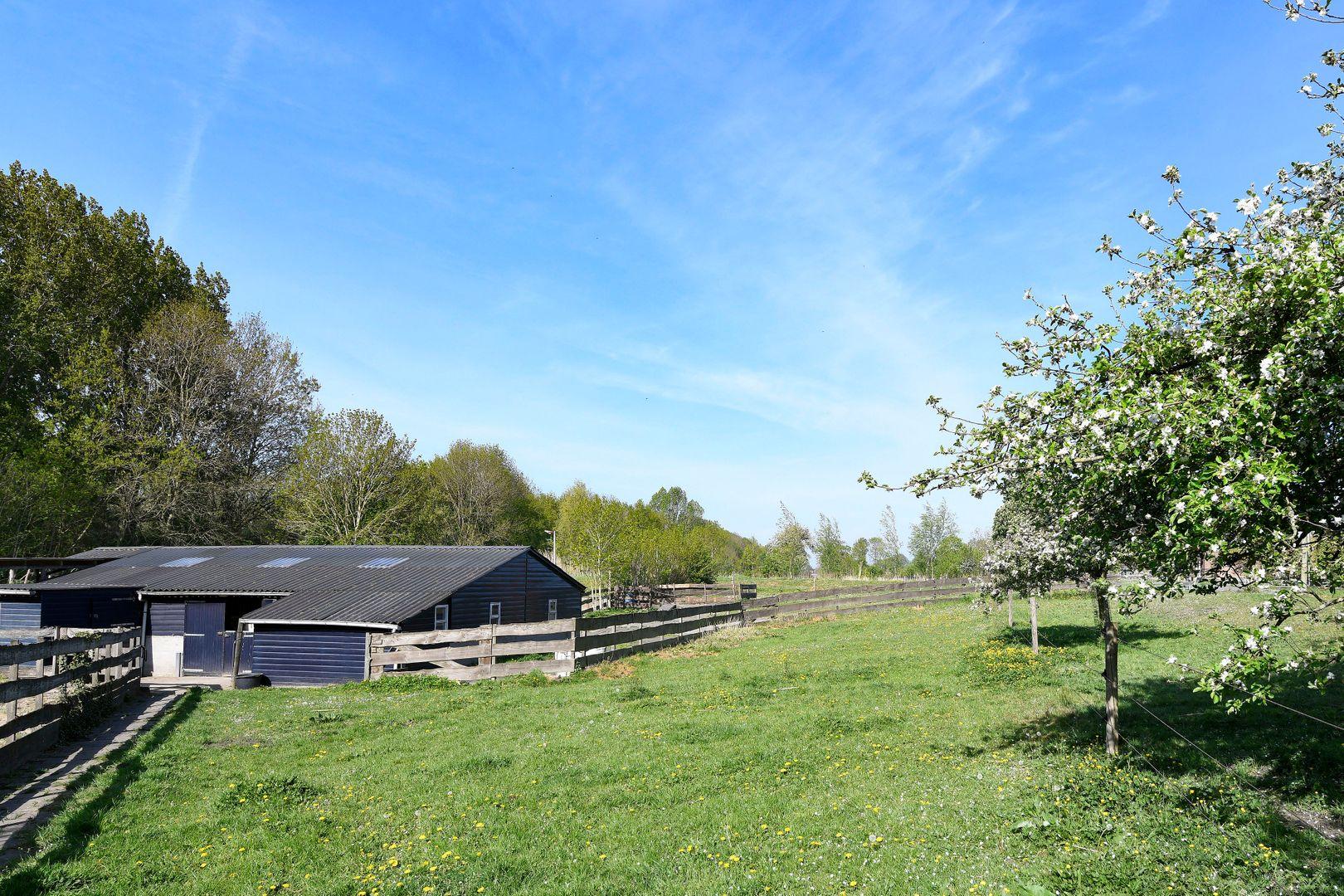 Ridderbuurt 6 a, Alphen Aan Den Rijn foto-33 blur