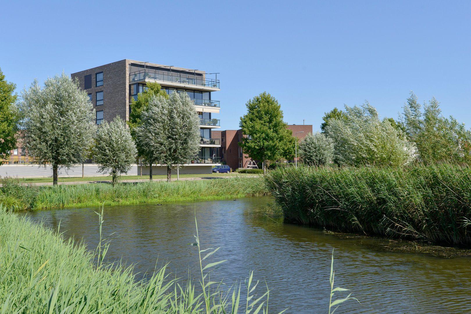 Kooikerstraat 93, Alphen Aan Den Rijn foto-0 blur