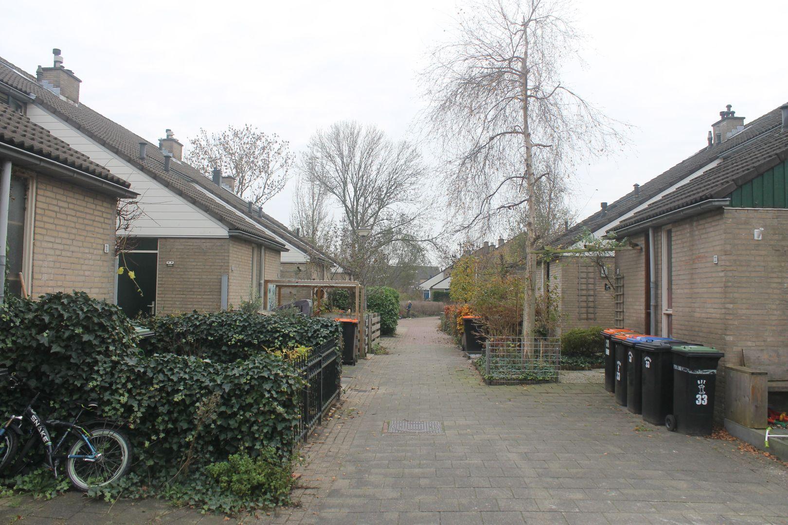 De Slingerkamp 7, Nieuwkoop foto-16 blur