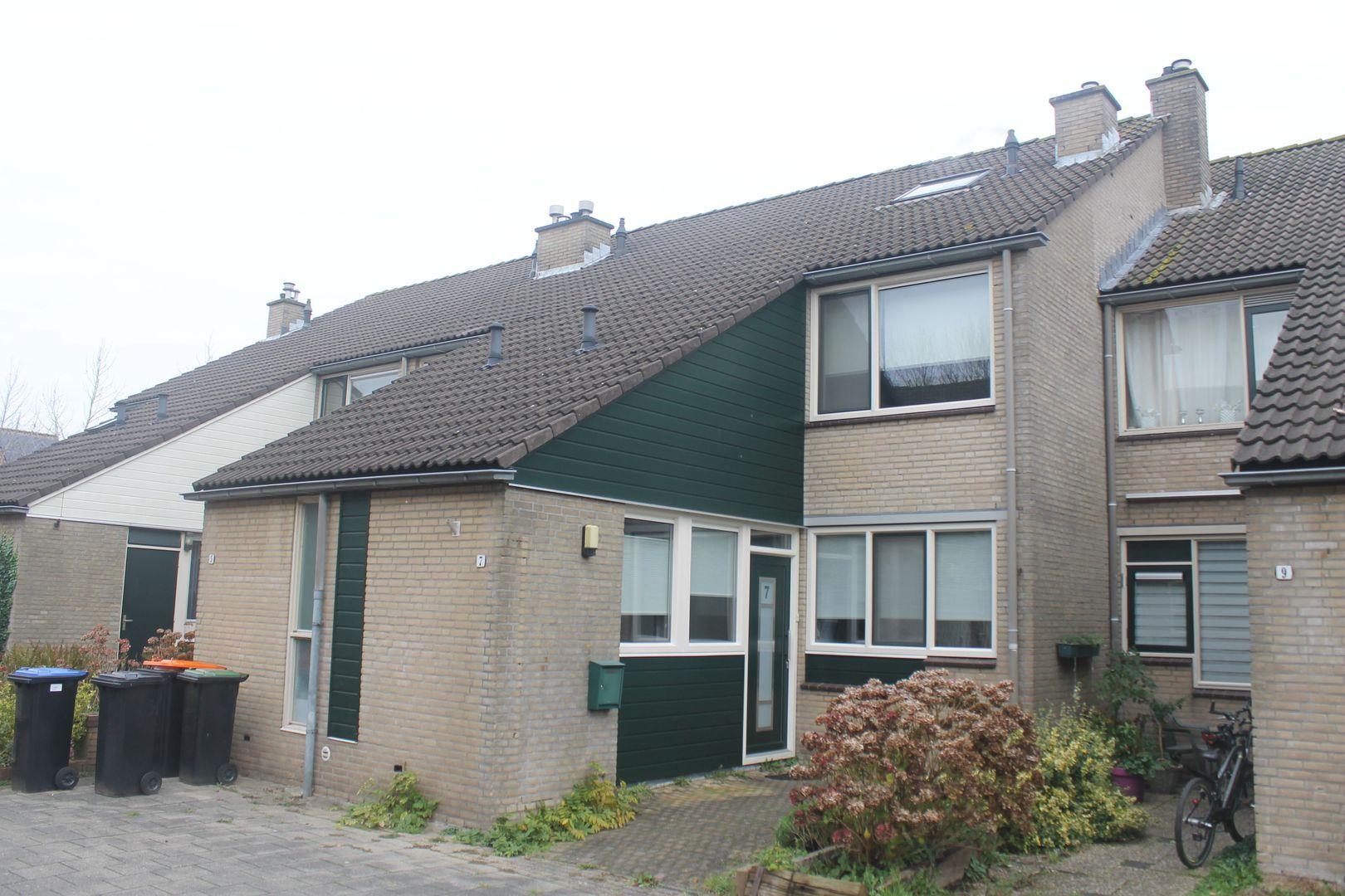 De Slingerkamp 7, Nieuwkoop foto-0 blur