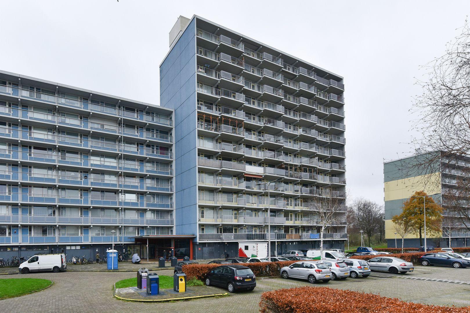 Vliestroom 211, Alphen Aan Den Rijn foto-16 blur