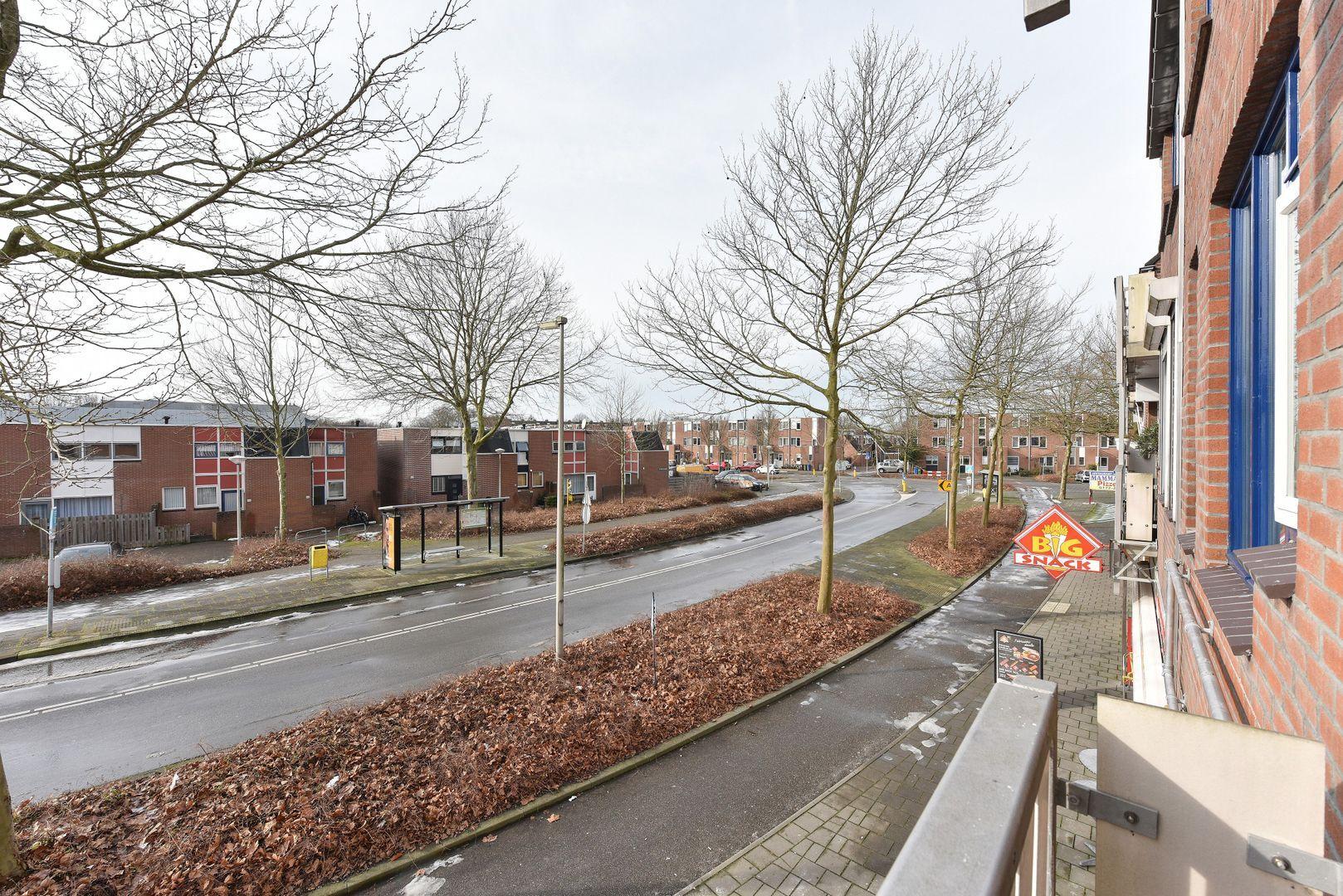 Stuifzwam 74, Alphen Aan Den Rijn foto-11 blur