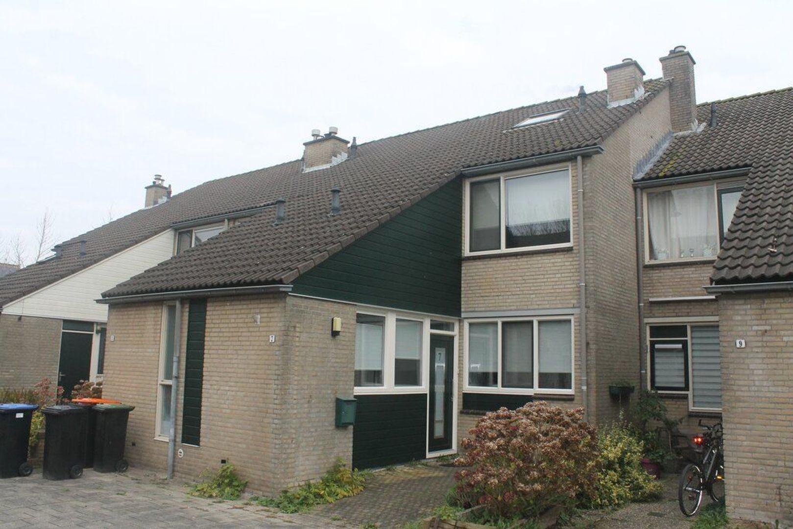 De Slingerkamp 7, Nieuwkoop foto-15 blur