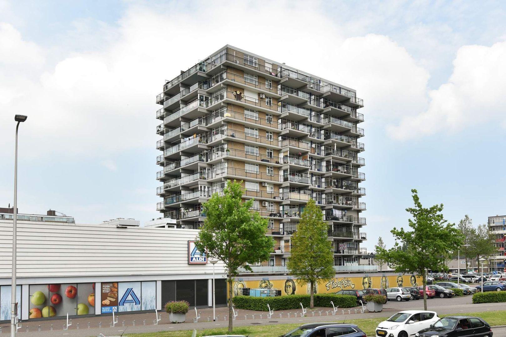 Aidaplein 118, Alphen Aan Den Rijn foto-0 blur