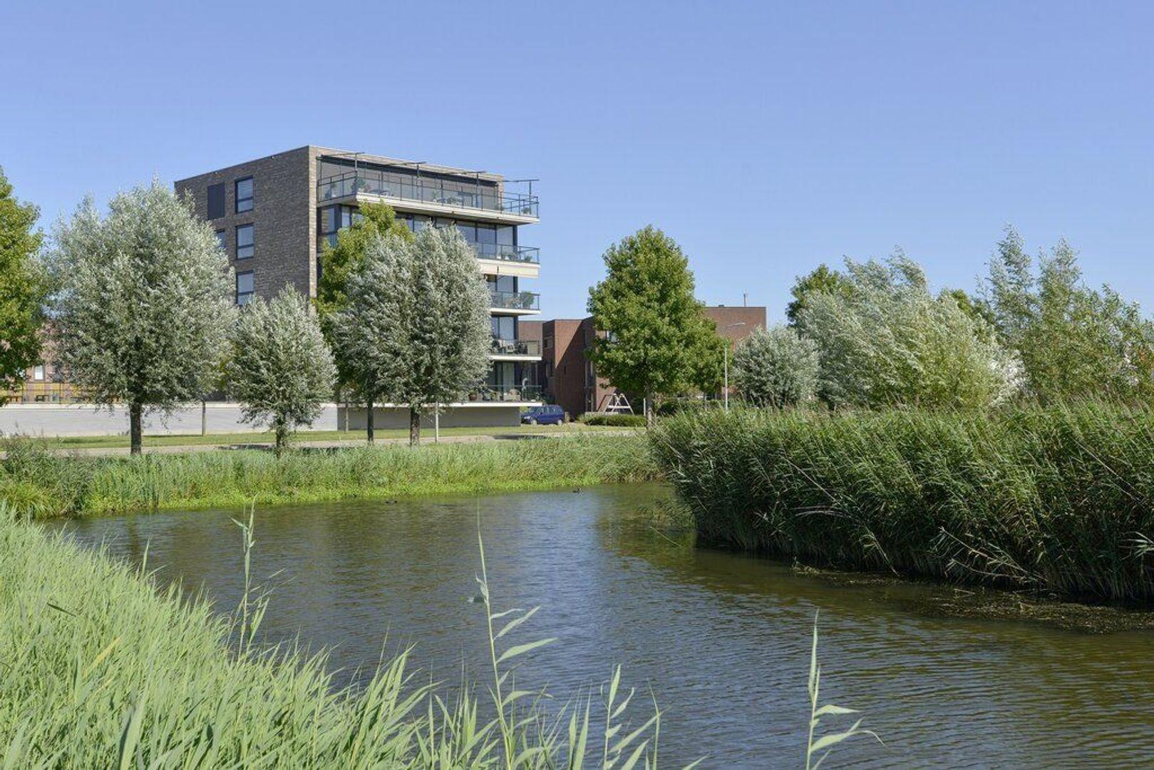 Kooikerstraat 85, Alphen Aan Den Rijn foto-18 blur