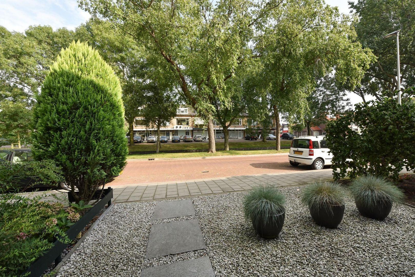 Goudenregenplantsoen 11, Alphen Aan Den Rijn foto-17 blur
