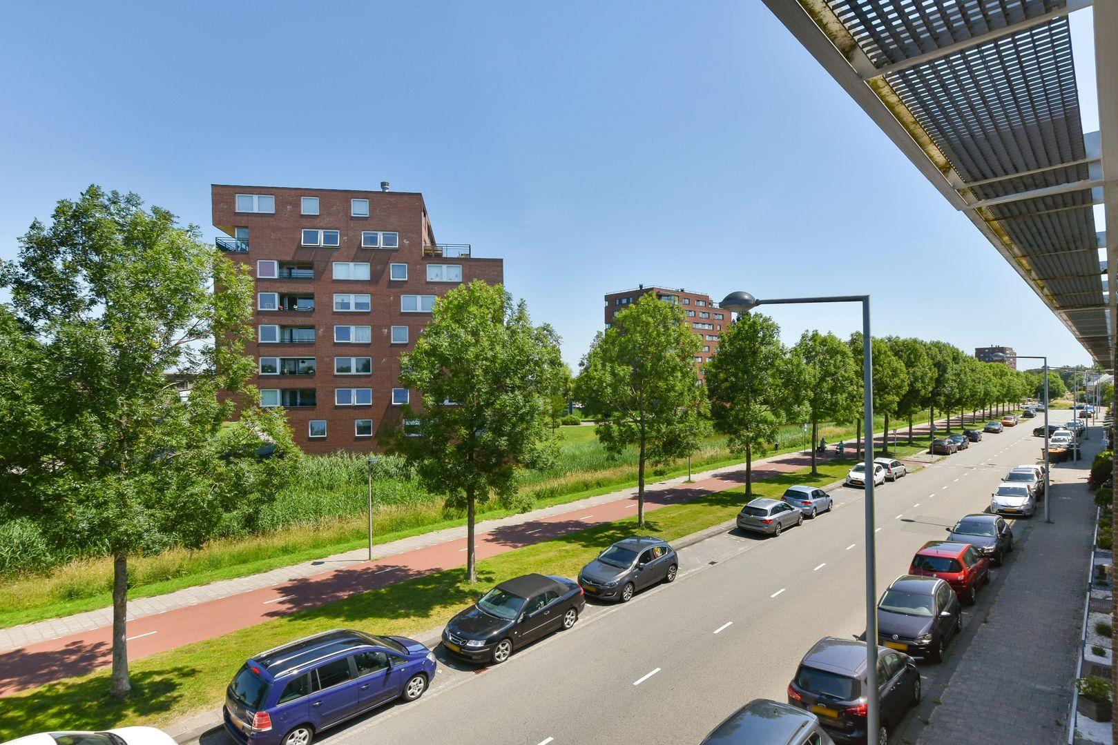 Libelsingel 51, Den Haag foto-25