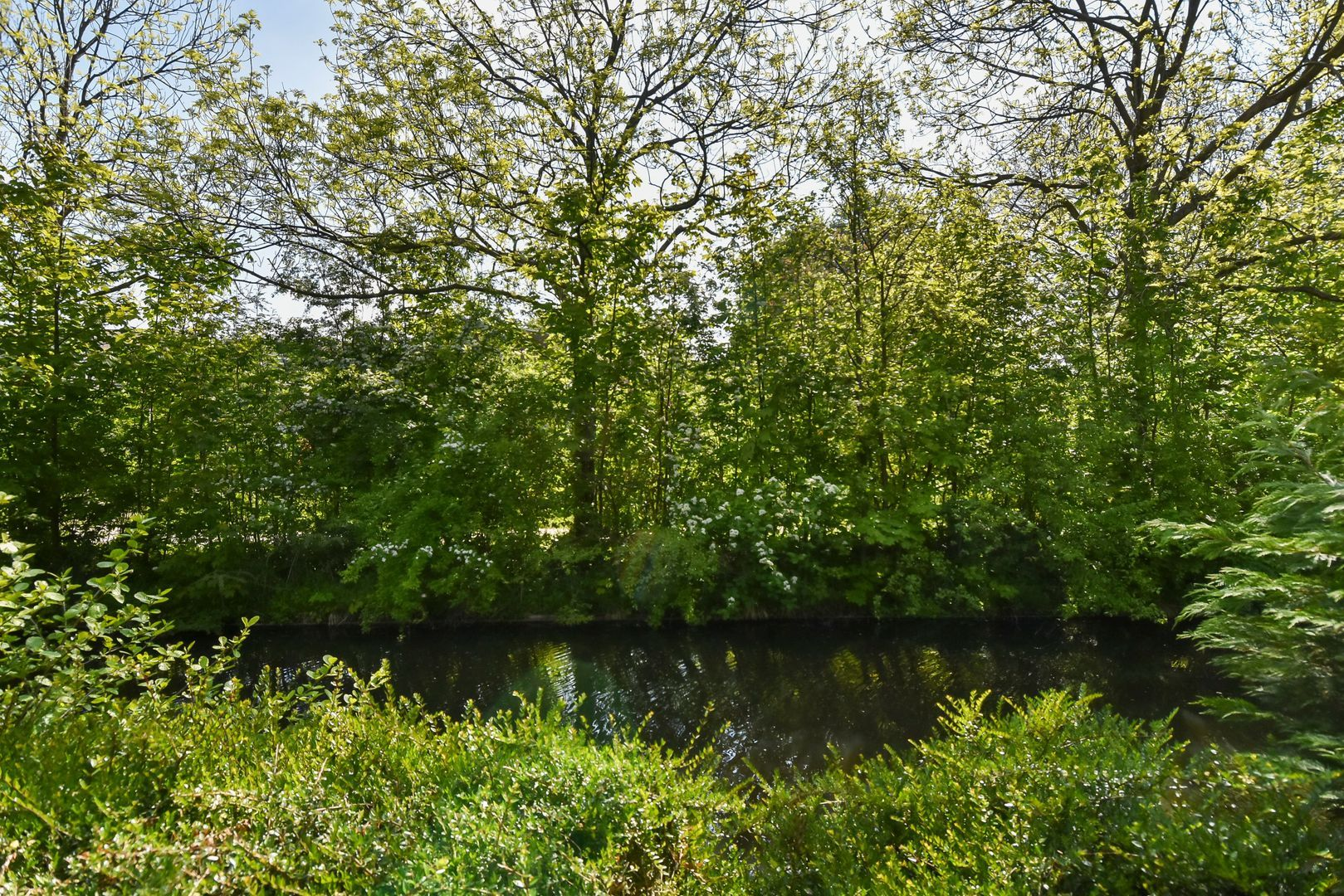 Wilgendreef 63, Voorburg foto-8