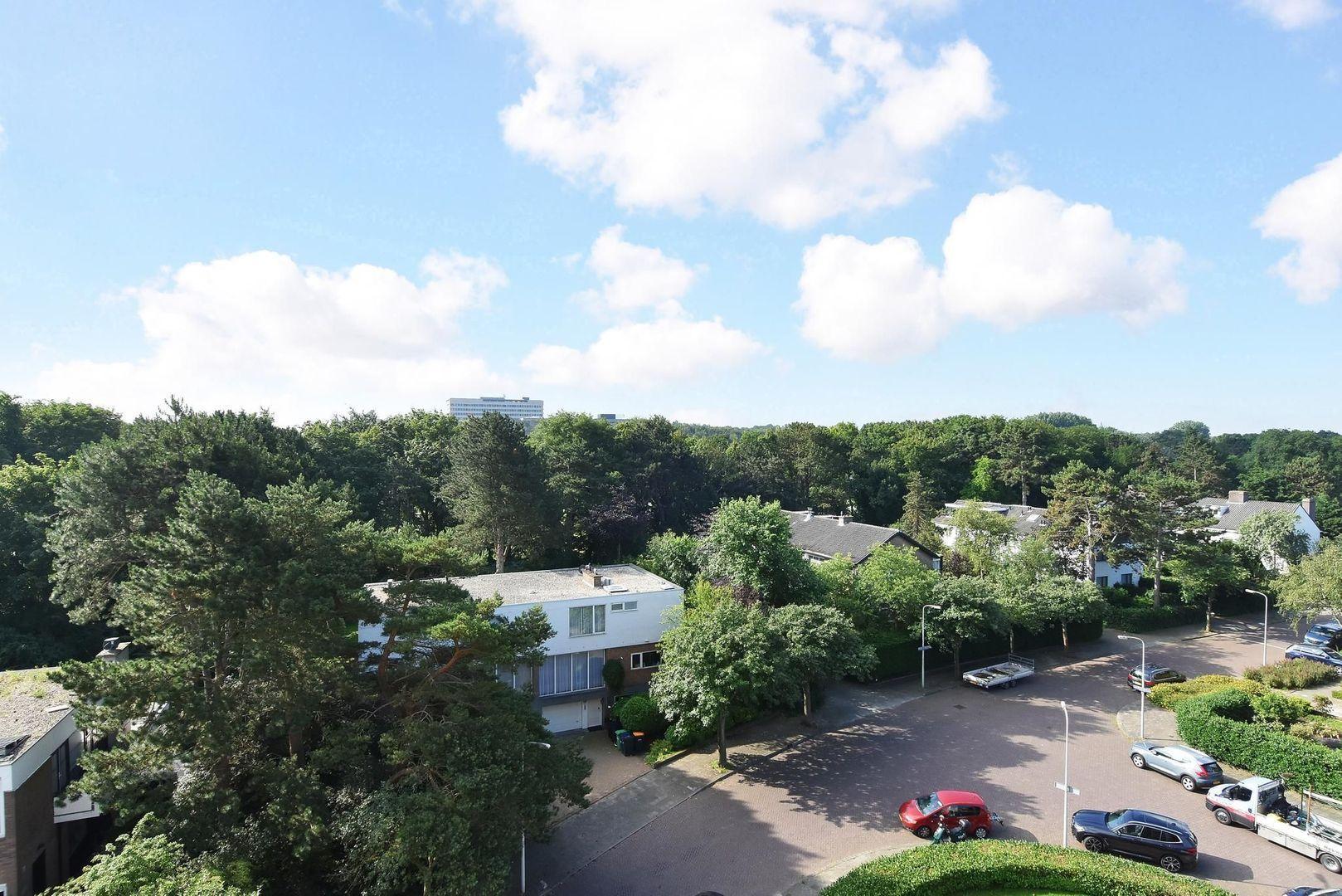 Van Alkemadelaan 892, Den Haag foto-25