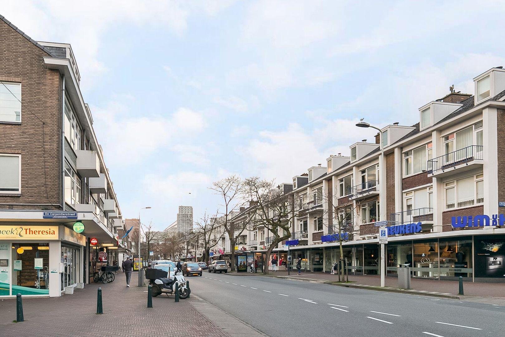 Theresiastraat 133 b, Den Haag foto-23