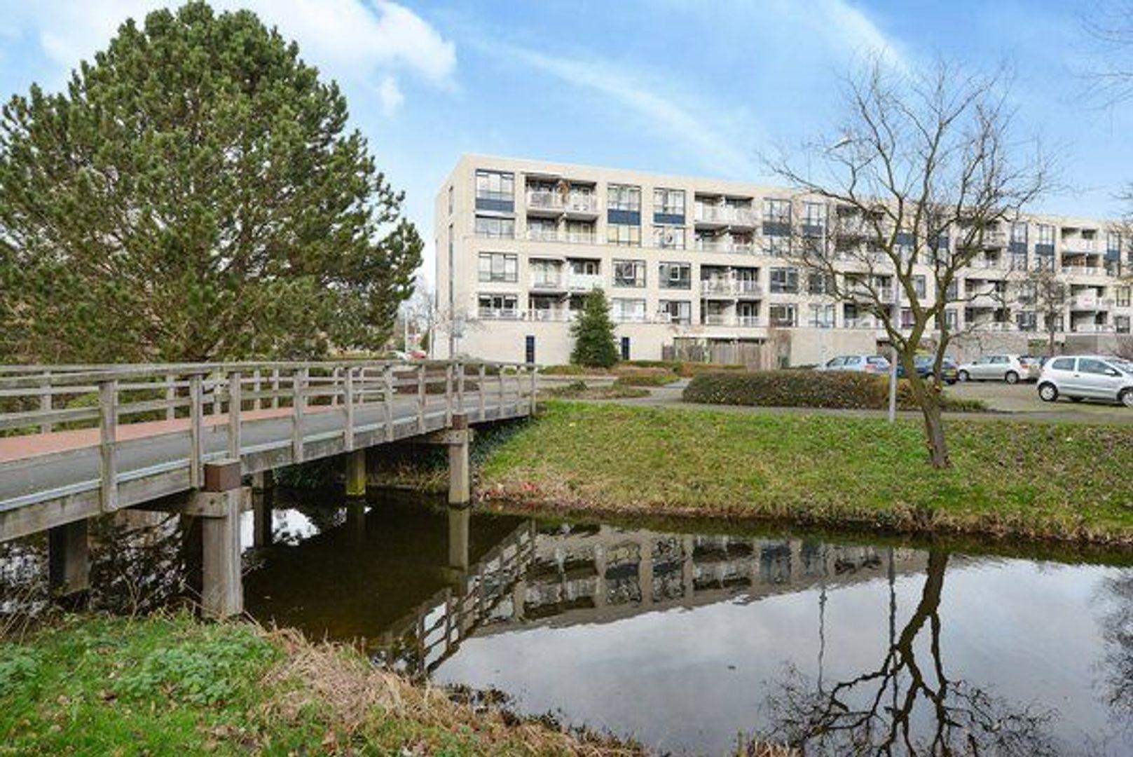 Grashof 217, Leidschendam foto-1