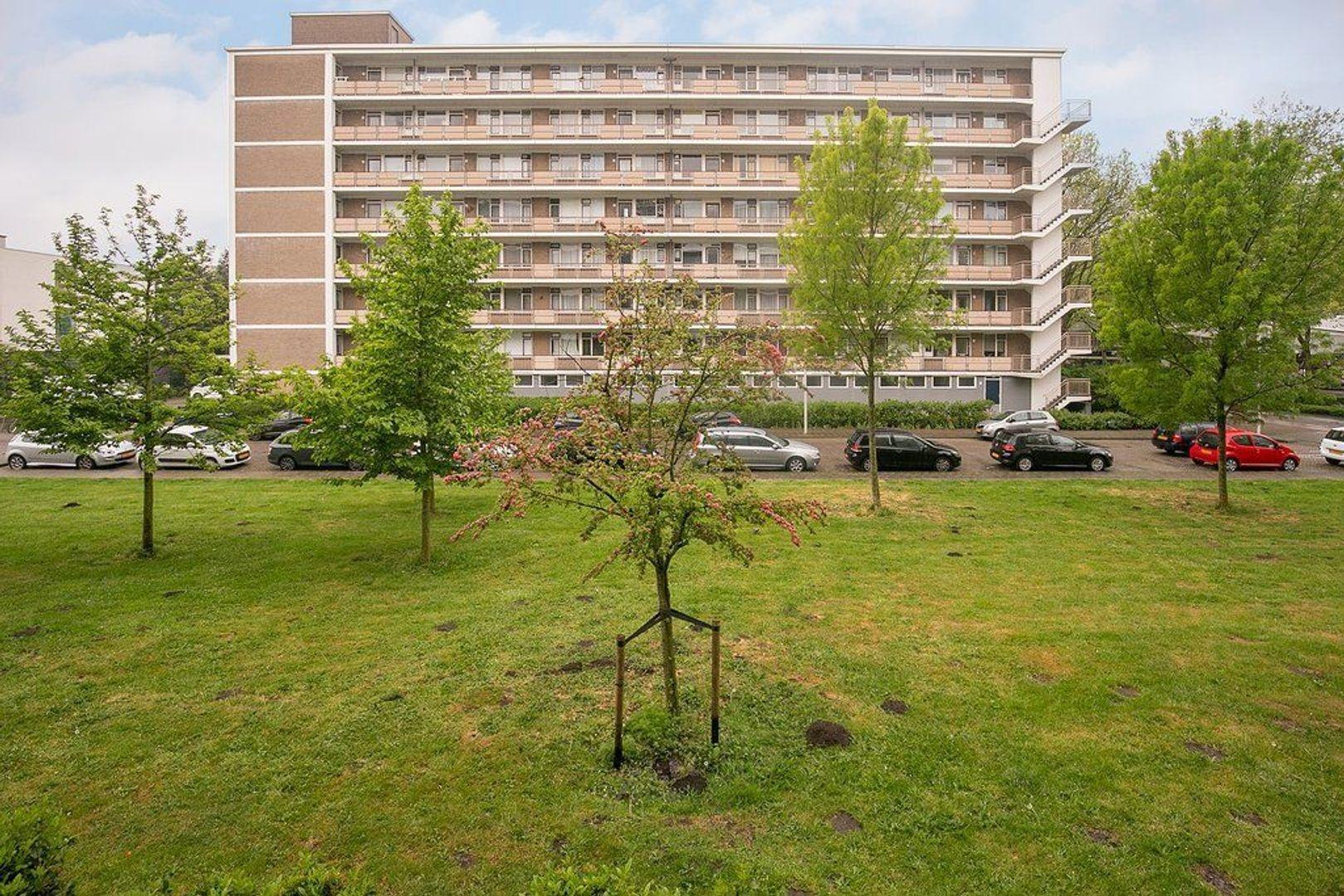Zwedenburg 8, Den Haag foto-20
