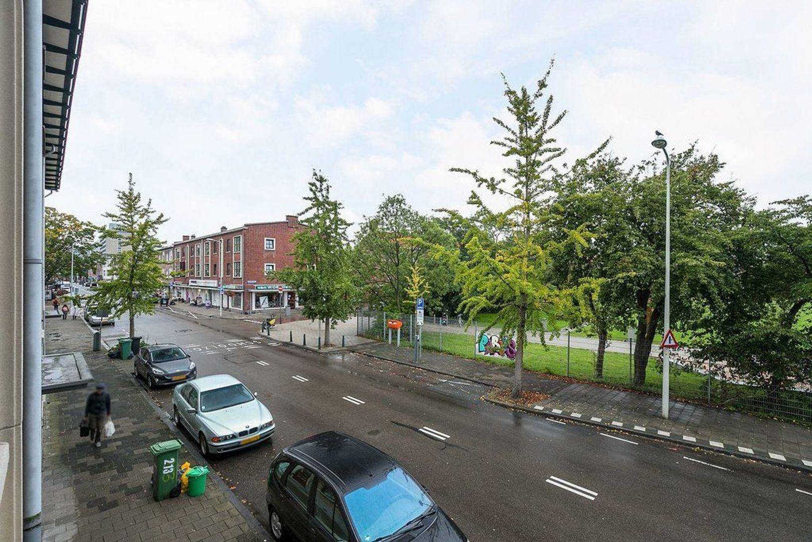 Theresiastraat 227, Den Haag foto-4