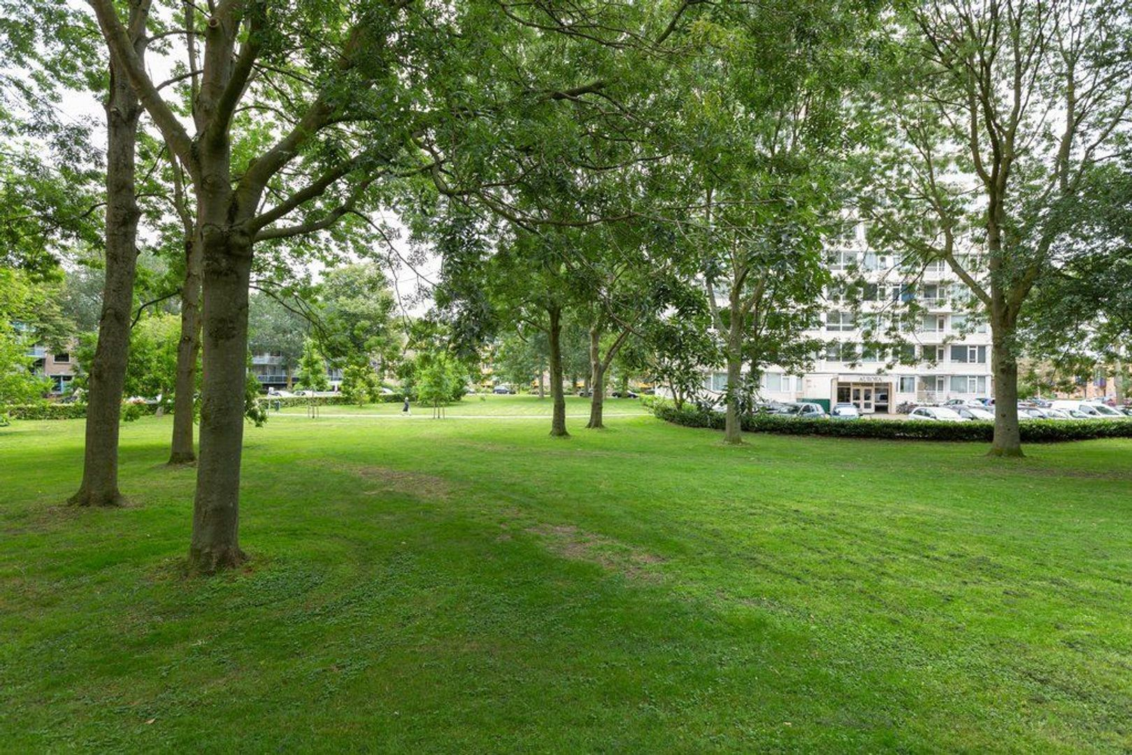 Tarwekamp 95, Den Haag foto-2
