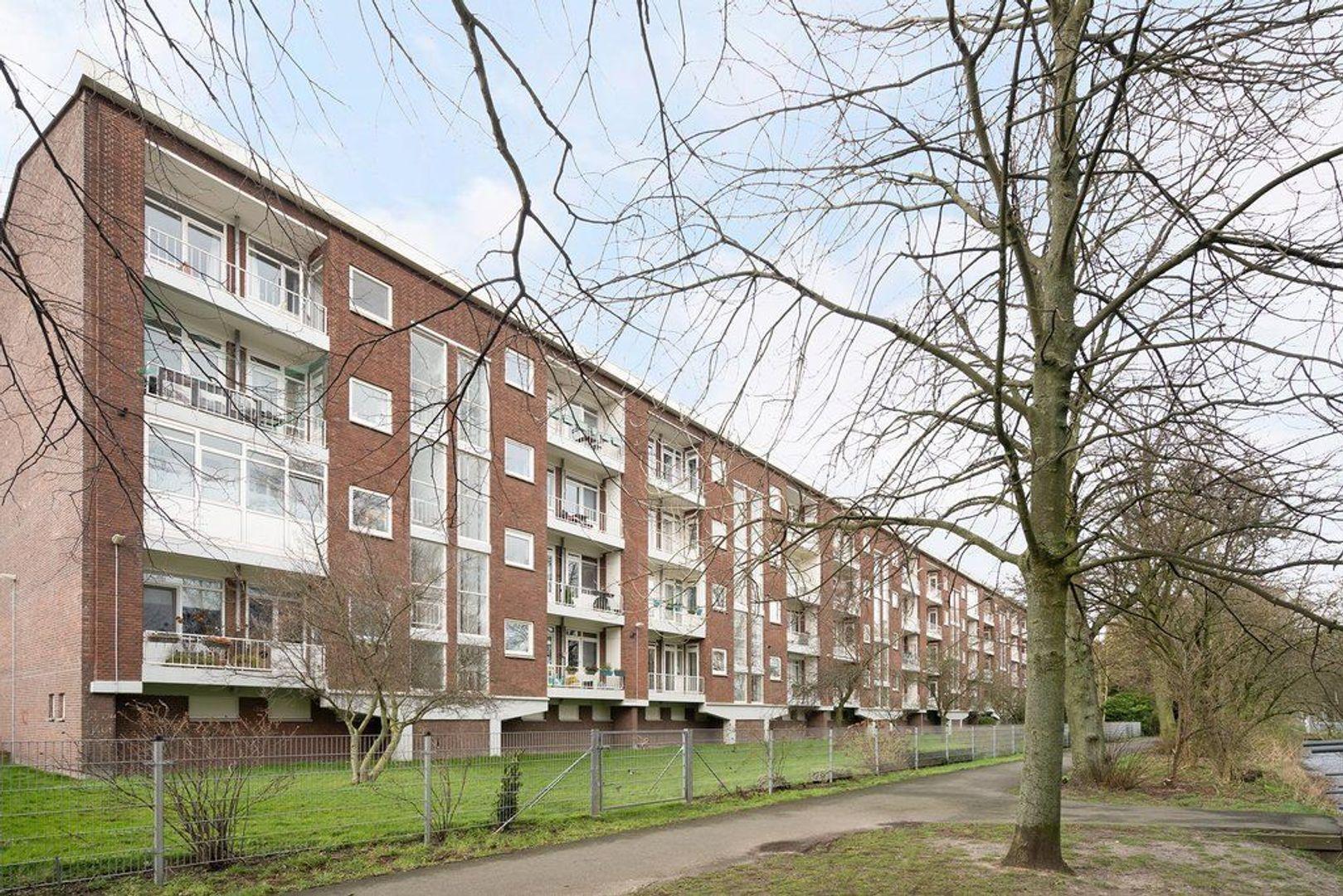 Zonnebloemstraat 47, Den Haag foto-7