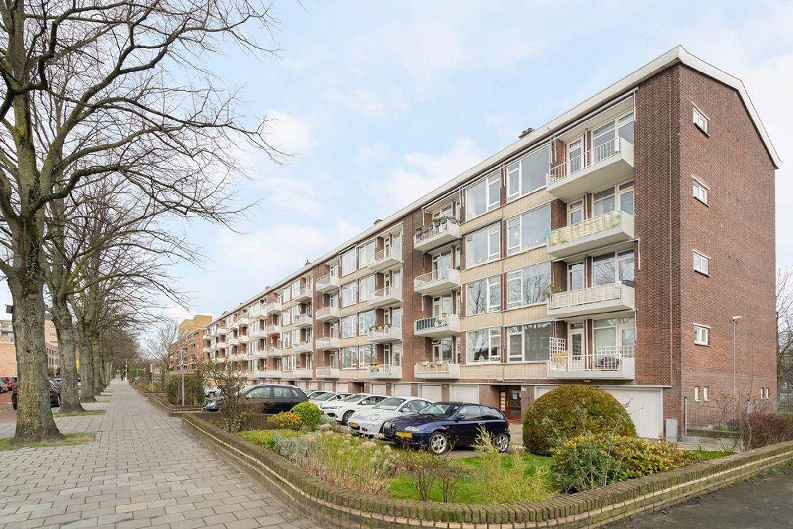 Zonnebloemstraat 47, Den Haag foto-6