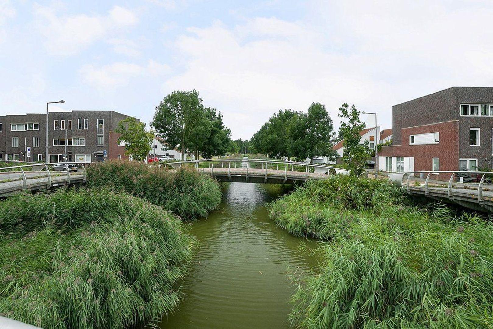 Alikruiksingel 4, Den Haag foto-37