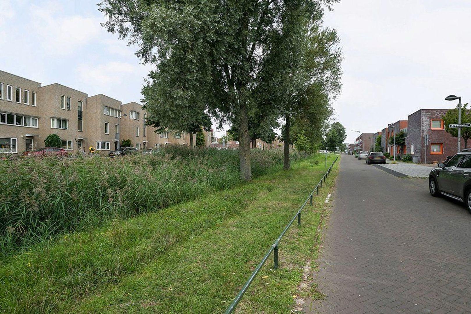 Alikruiksingel 4, Den Haag foto-40
