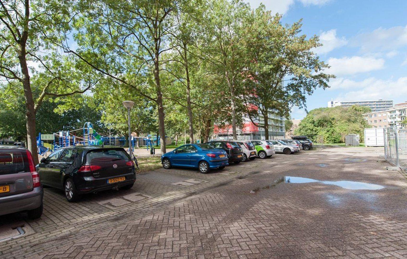 Elviraland 206, Den Haag foto-24