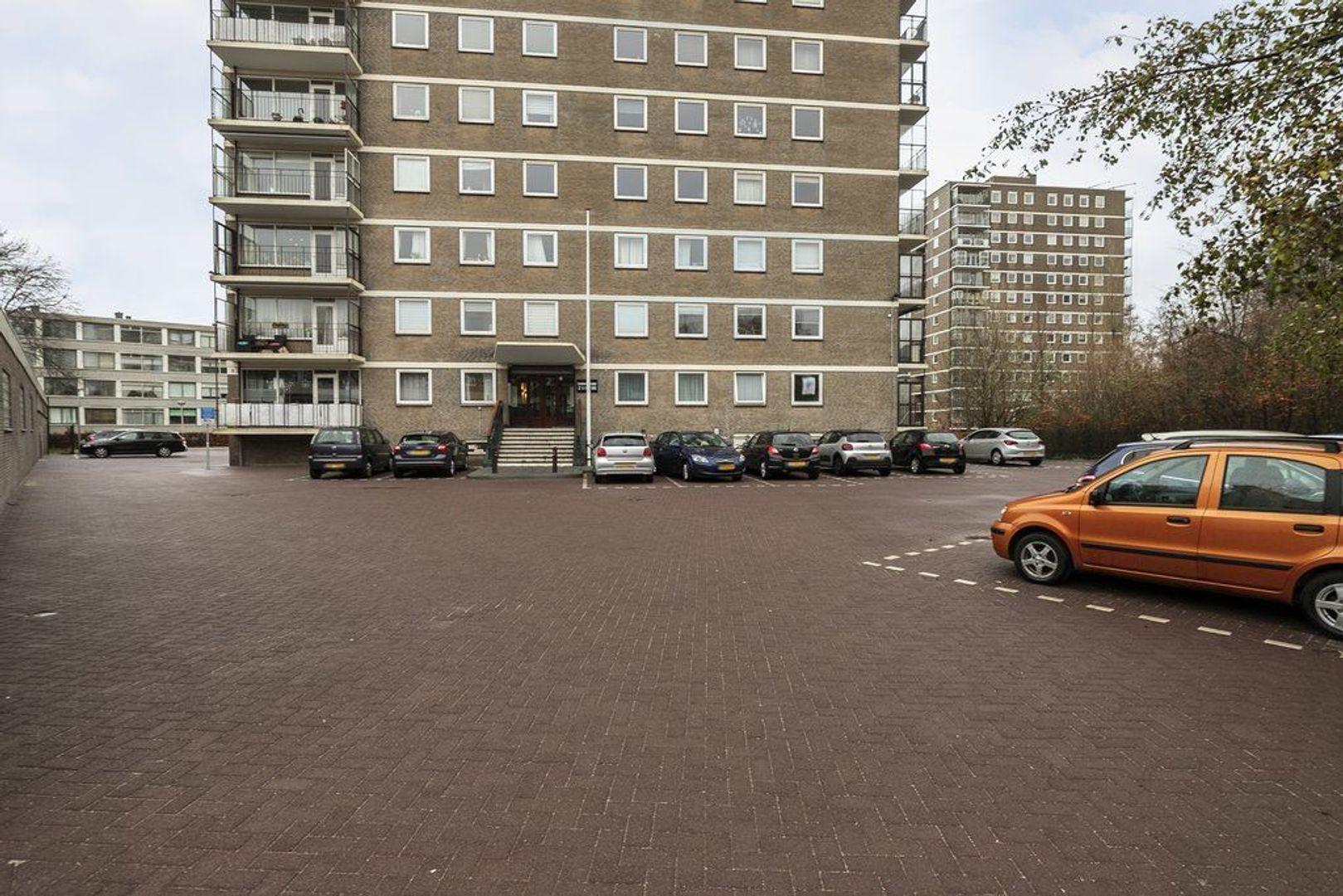 Dignaland 84, Den Haag foto-16