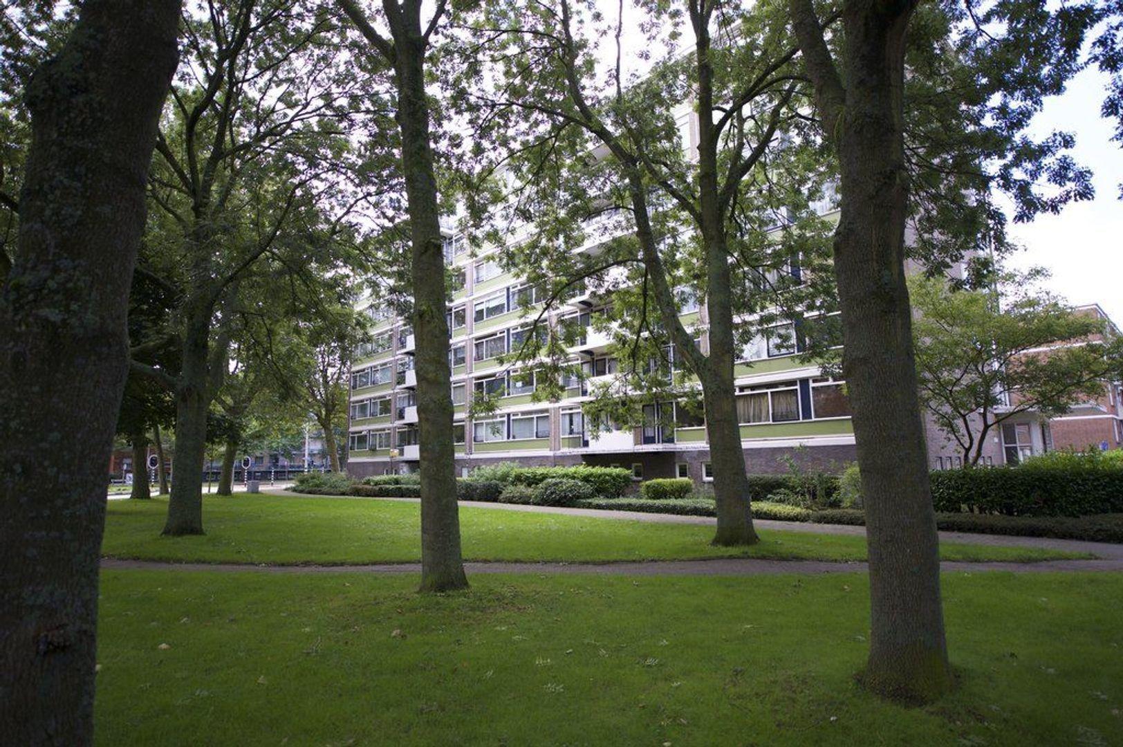 Het Kleine Loo 172, Den Haag foto-0