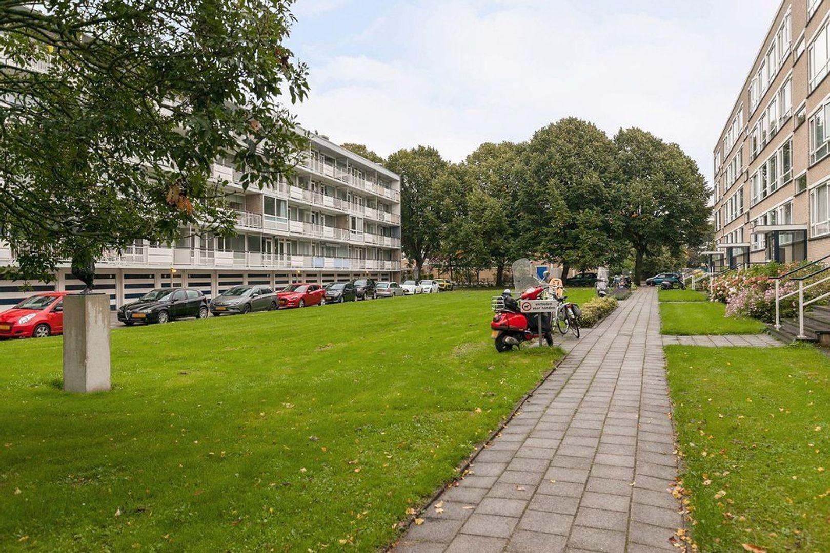 Parelmoerhorst 61, Den Haag foto-28