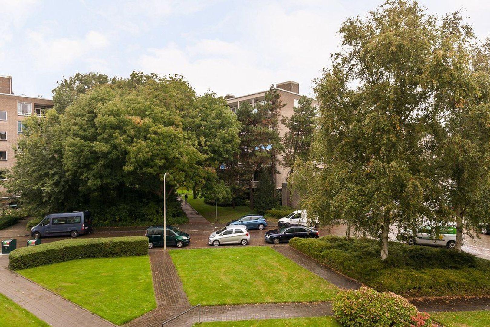 Parelmoerhorst 61, Den Haag foto-29