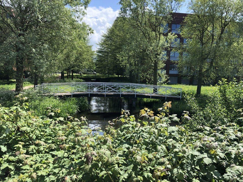 Schenkkade 274, Den Haag foto-37