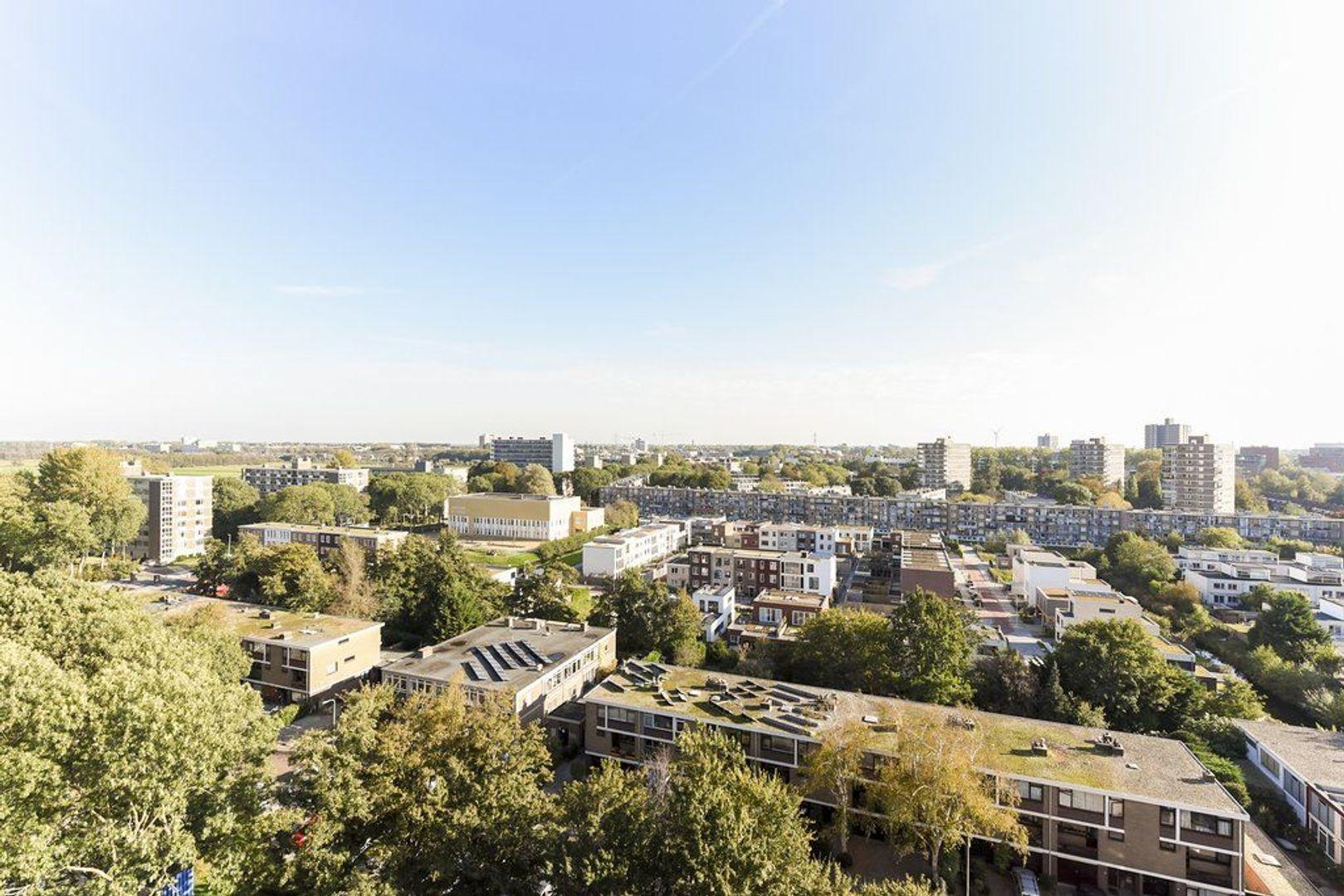 Elviraland 136, Den Haag foto-2