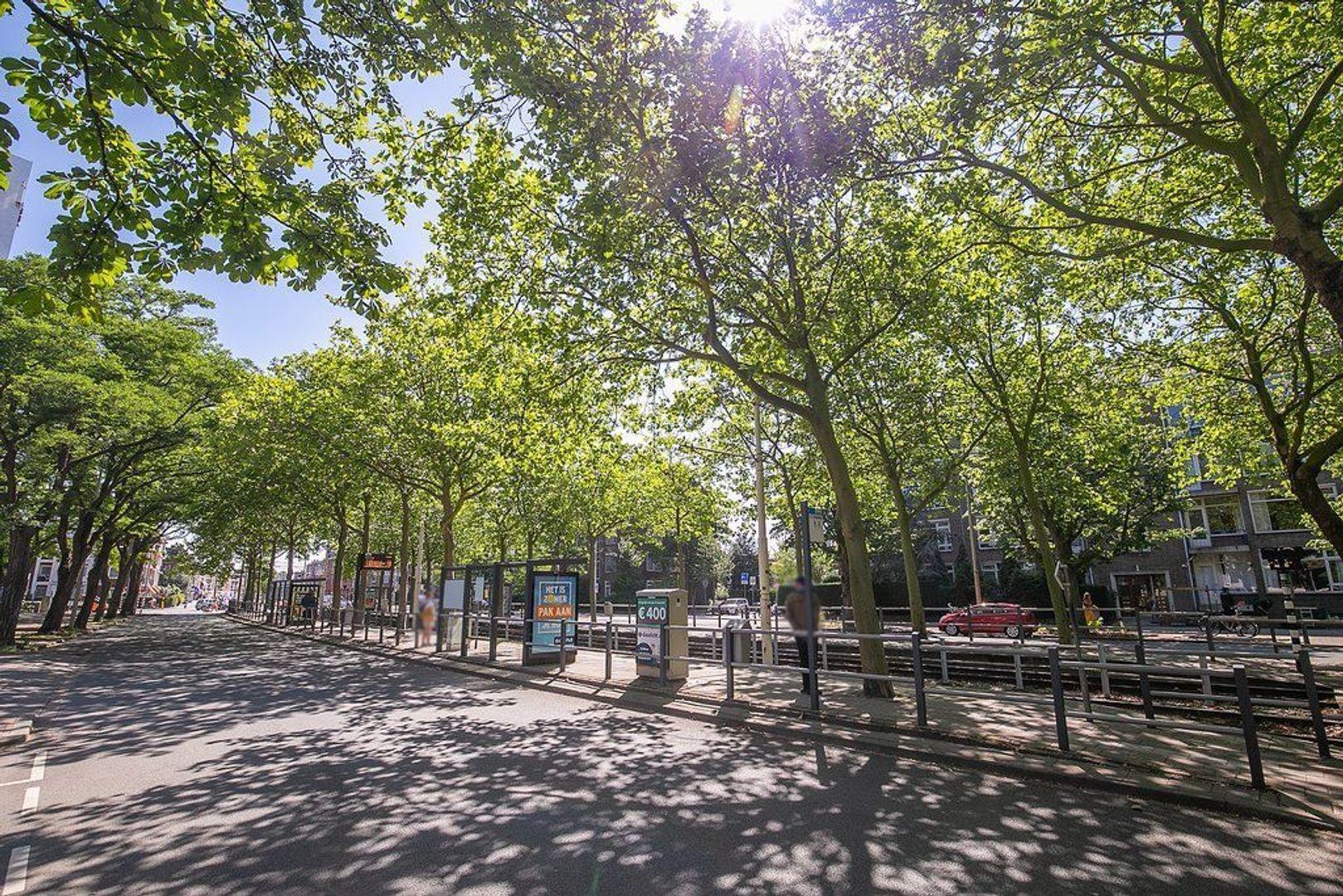 De Carpentierstraat 137, Den Haag foto-26