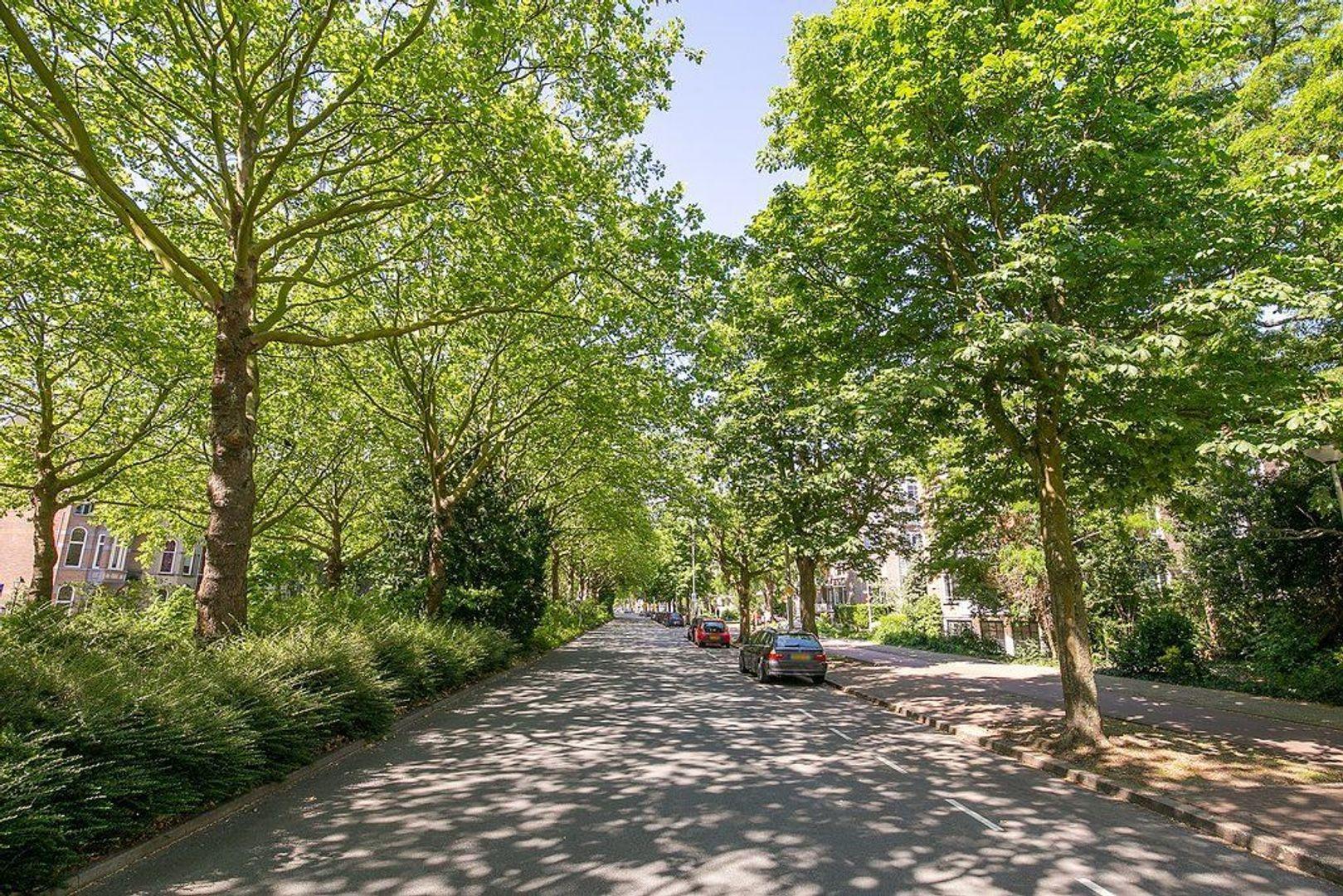 De Carpentierstraat 137, Den Haag foto-27