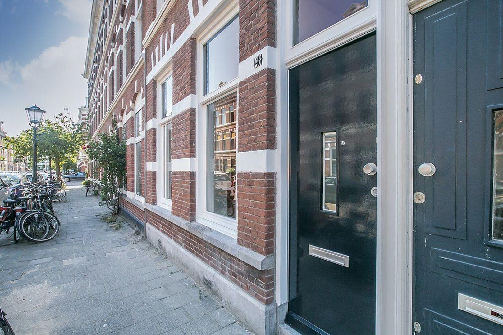 Rijklof van Goensstraat 48, Den Haag foto-25