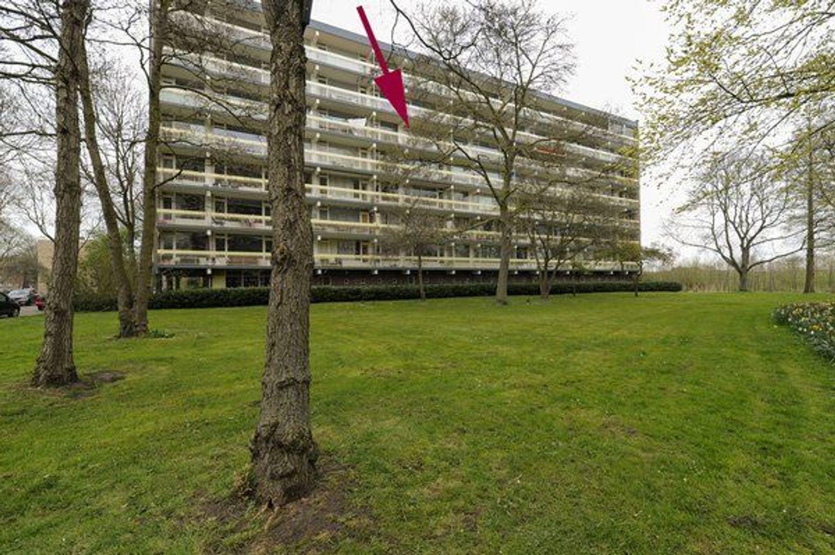 Isabellaland 1162, Den Haag foto-21
