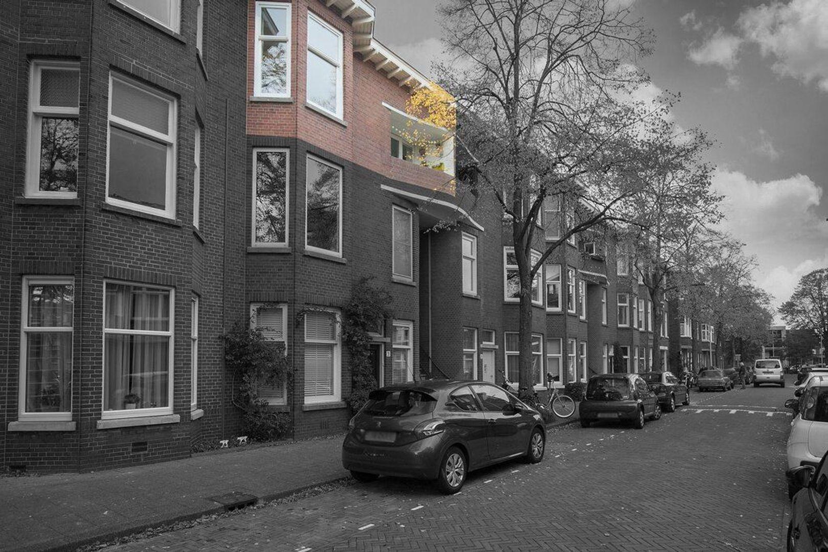 Van der Capellenstraat 42, Den Haag foto-4
