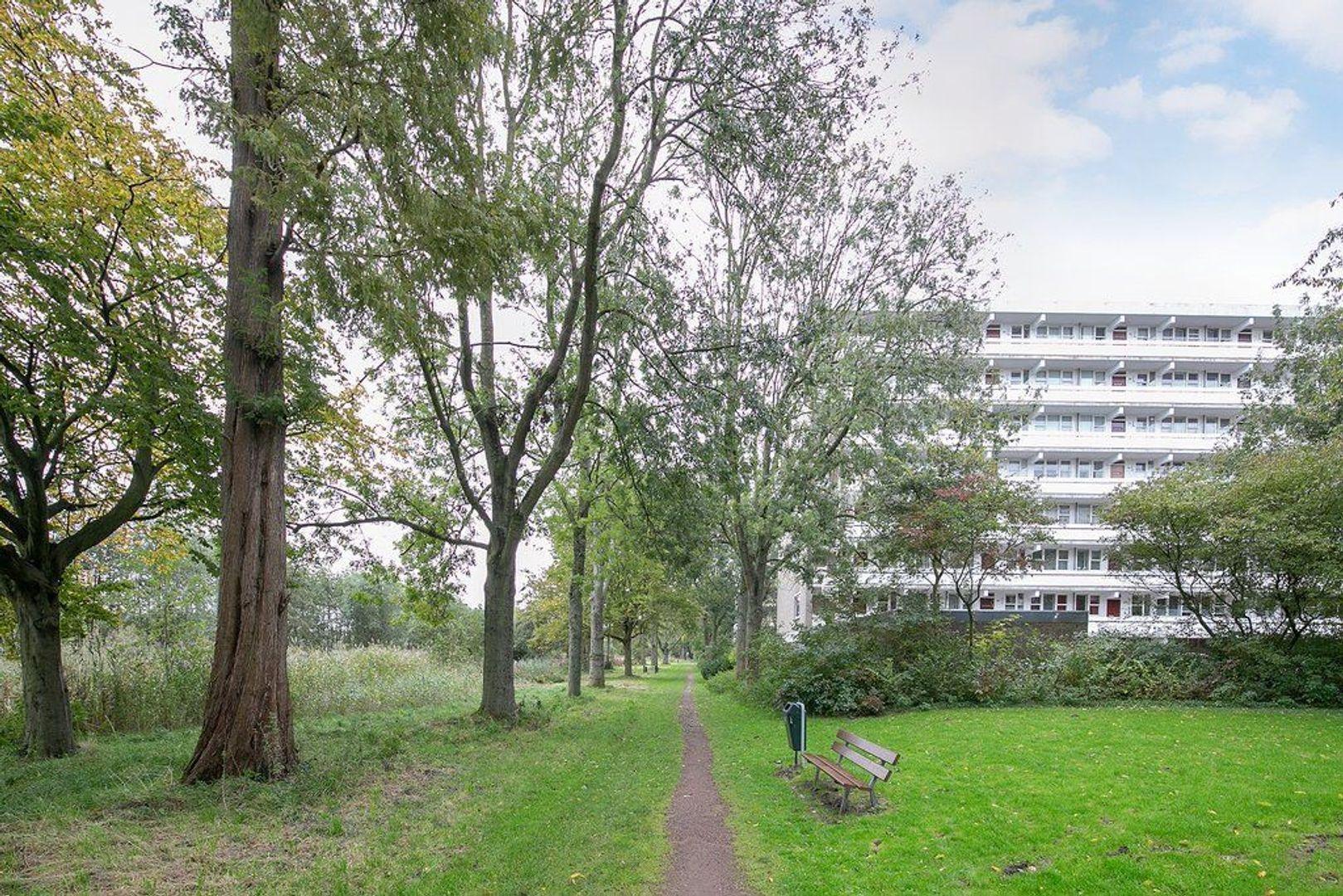 Isabellaland 858, Den Haag foto-20