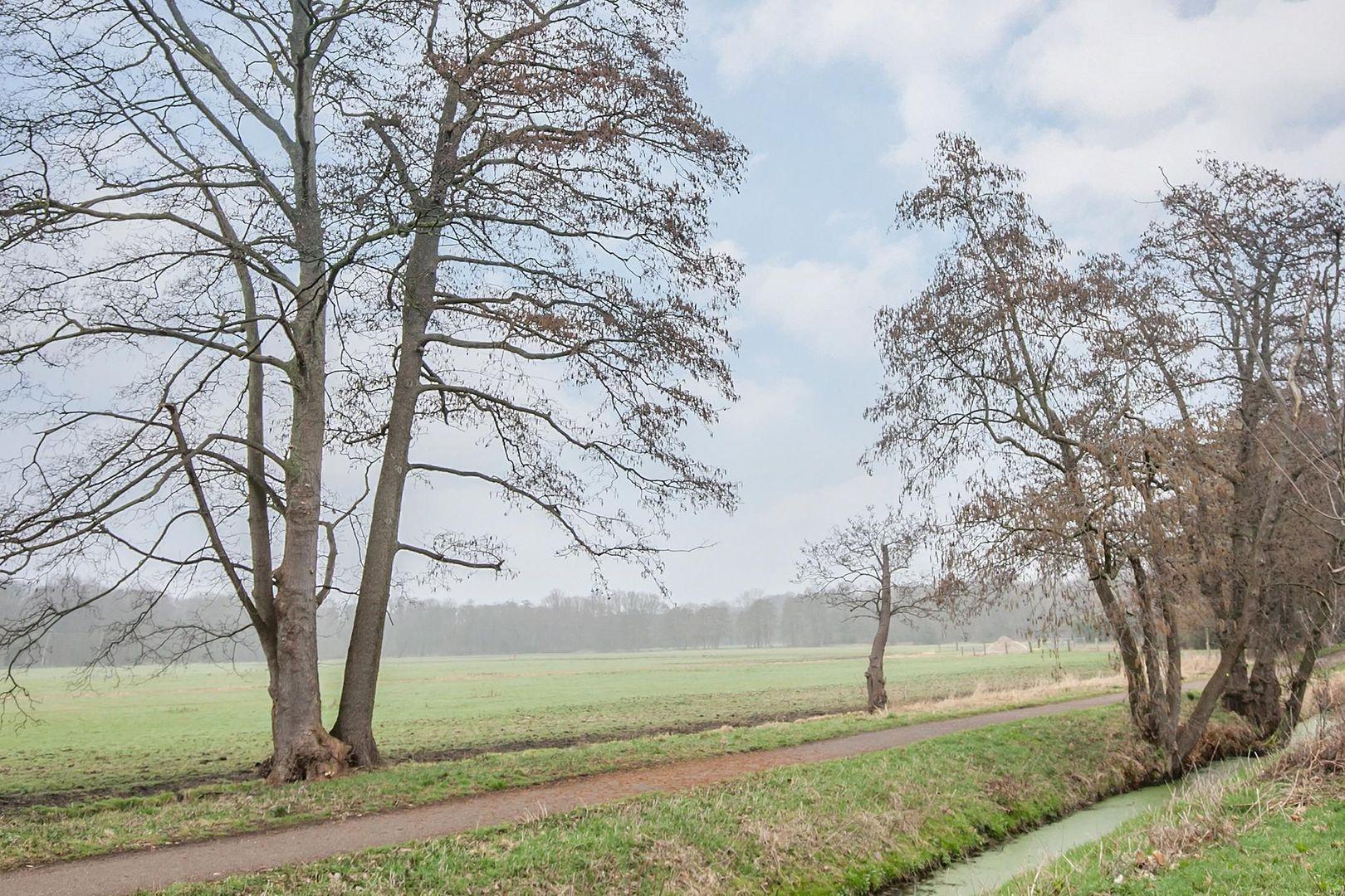 Barnsteenhorst 176, Den Haag foto-27
