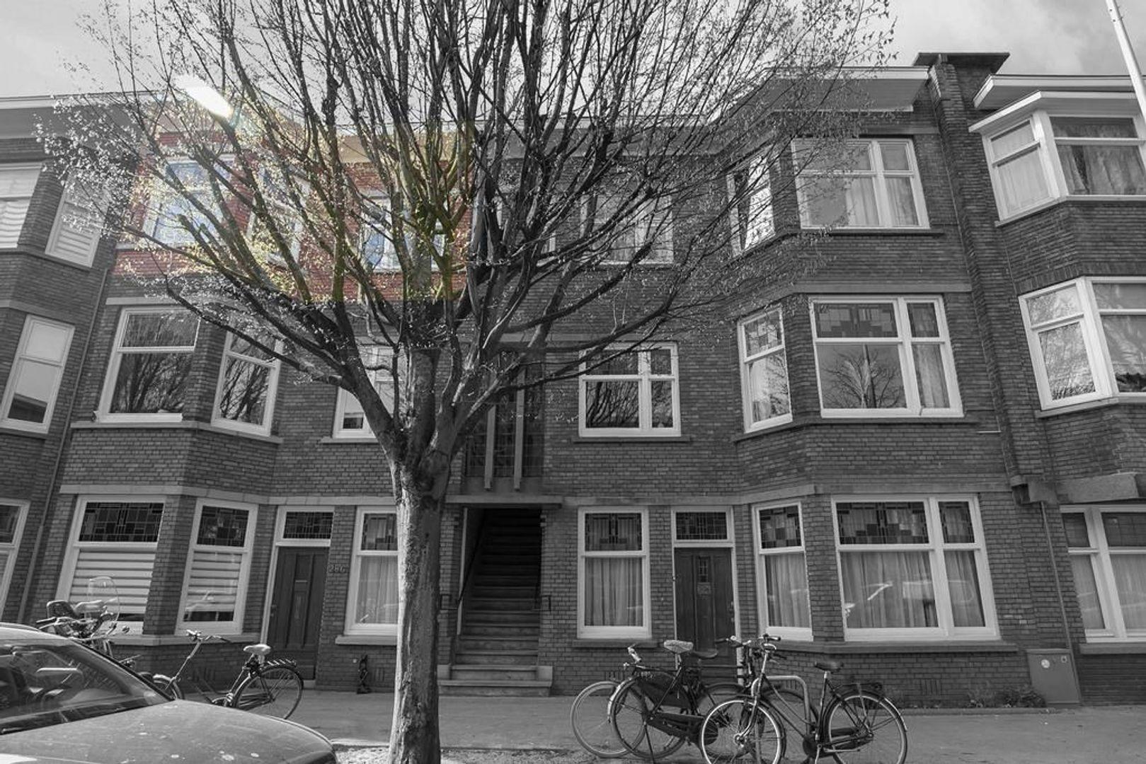 Stuyvesantstraat 290, Den Haag foto-5
