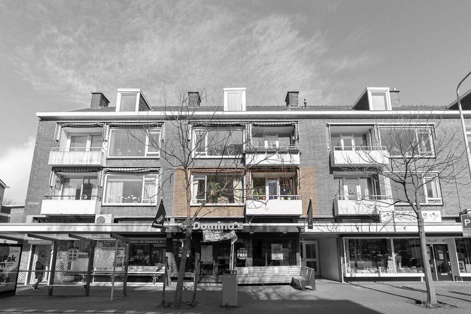 Theresiastraat 38, Den Haag foto-25