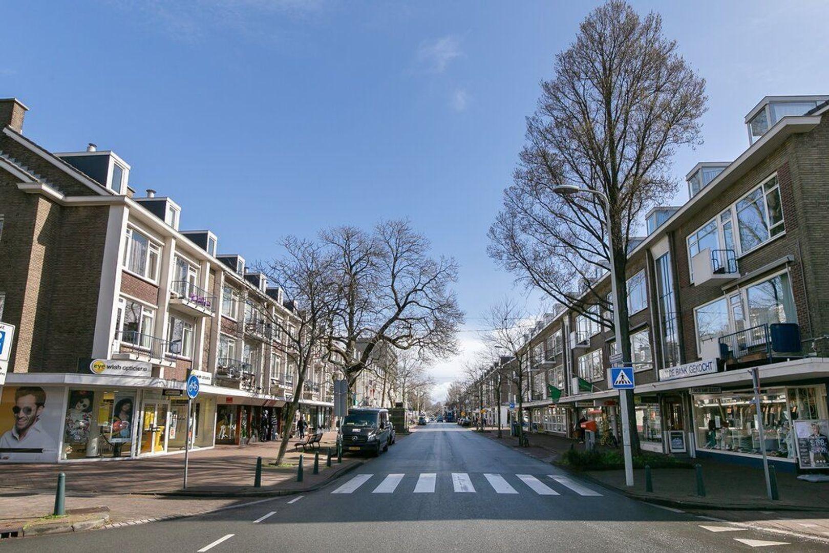 Theresiastraat 38, Den Haag foto-22