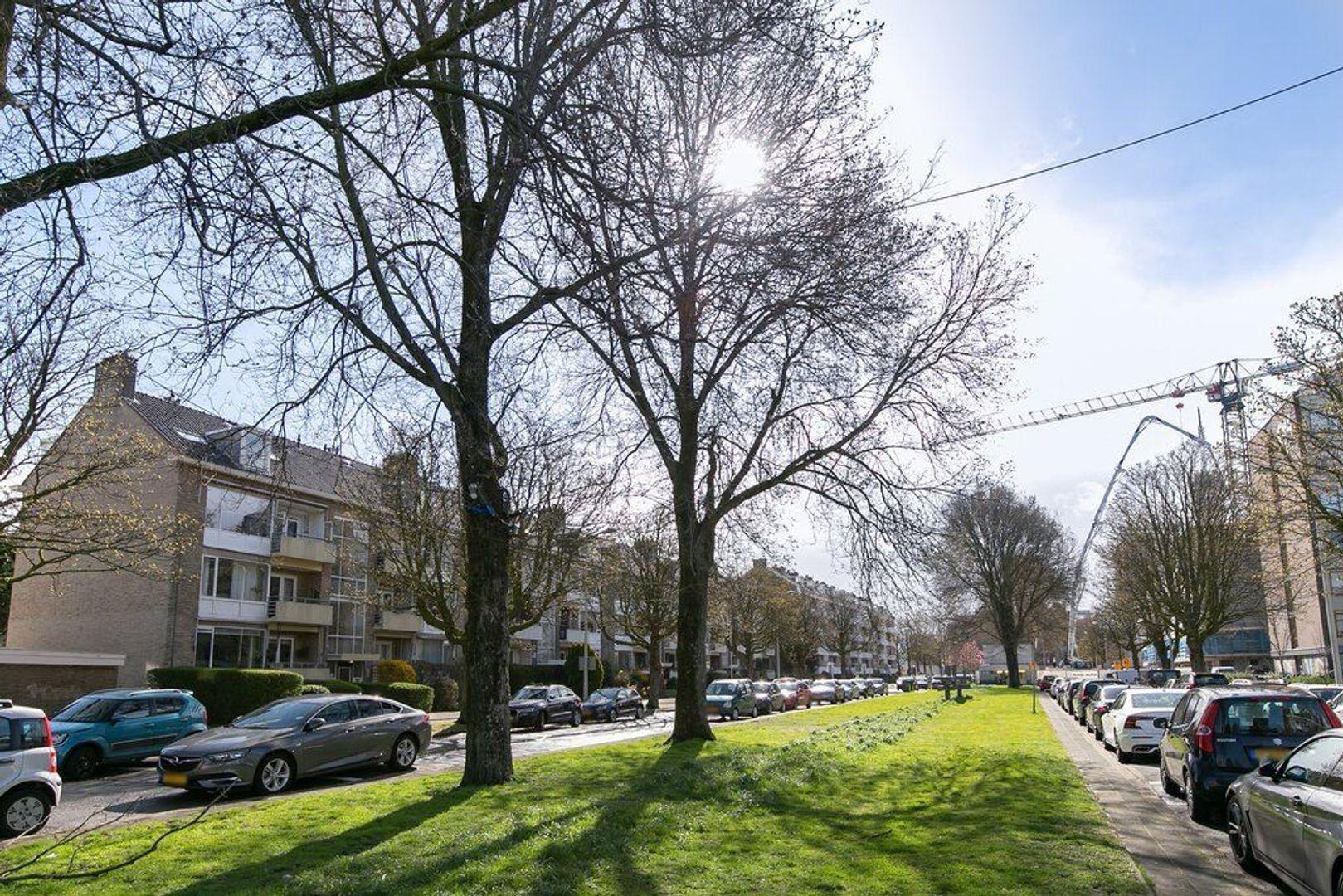 Theresiastraat 38, Den Haag foto-23