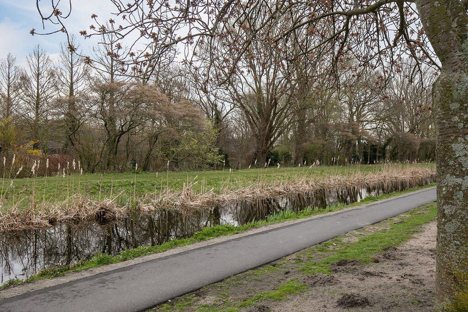 Carel Reinierszkade 111, Den Haag foto-37